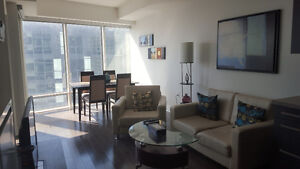 Downtown Furnished 1 Bed + Den Suite @ Union - Yonge and Front