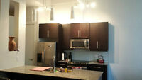 Fully Furnished 950 sq ft loft for lease at Arrow Lofts