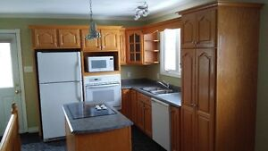 Cabinets with counter tops