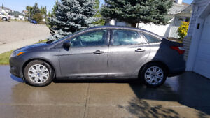 2012 Ford Focus SE - Peppy and Economical!