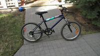 Moutain Bike Raleigh 26 Inch