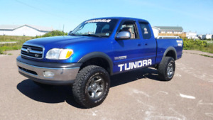 Tundra power