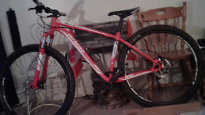 Specialized ( ROCKHOPPER 29er )