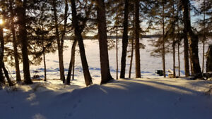 Emma Lake lake front cabin / lot for sale