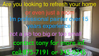 YOU NEED PAINTING DONE CALL T.N. PAINTING    875-7191