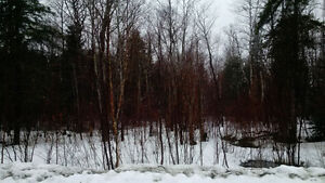 2.4 ACRE WATERFRONT LOT WITH SOUTH-WESTERN EXPOSURE