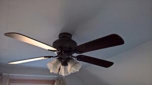 Westinghouse 5-bladed fan/light combo