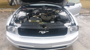 2006 Mustang Convertable  (4.0 litre 5 Speed)