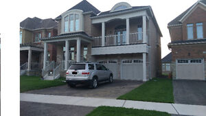 1yr new 4bd house for rent available end of NOV Georgetown south