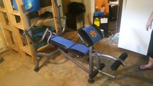 Workout bench Plus