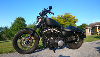 *REDUCED* 2010 Harley Sportster Iron