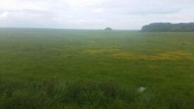 26 acres grass to let