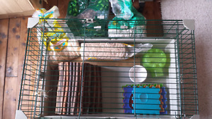 Medium to large rabbit or rat cage with equipment