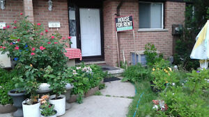 Room for rent at Summit Ave, London London Ontario image 1