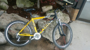 Trek 4300 IN GREAT SHAPE