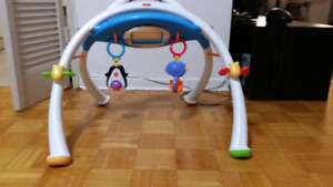 FISHER PRICE Apptivity Gym for iPhone & iPod Touch Devices