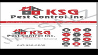 pest control in brampton, mississaug  Gta Low price @6479903205