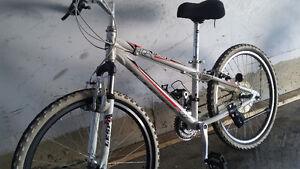 """24"""" bike"""