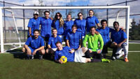 Adult Competitive and Recreational COED Soccer