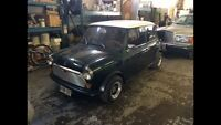 Austin mini for sale