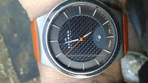 men's skagen titanium  watch