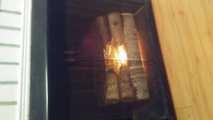 Fireplace (electric) mint condition 120$