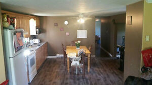 3 bedroom renovated mini home with garage
