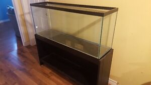 Aquarium 55 gallons with stand