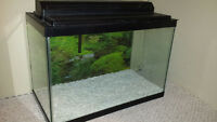 20 Gallon Fish Tank Plus Everything You Need
