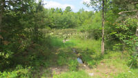 Lot 2 Leland Rd Vacant Lot - 4.64 Acres with well