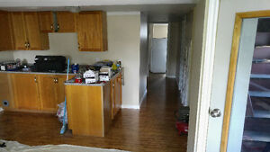 Large basement apartment