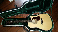Walden Acoustic/electric guitar and SKB Road Case