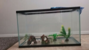 Aquarium with all accessories for sale