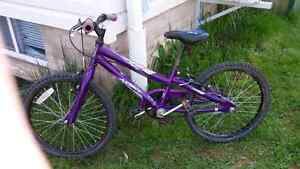 20 inch girl bikes for sale