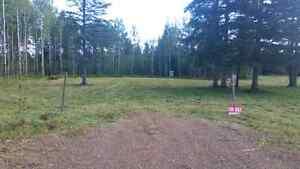 2.5 acre - 1113 Poleline rd