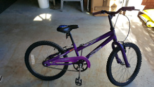 "Girls 20"" Norco Daisy bike"