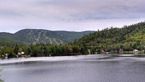 Terrains à vendre Anse-St-Jean Saguenay Saguenay-Lac-Saint-Jean image 2