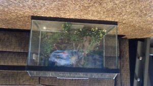 Fish tank in good condition located in Amherstburg