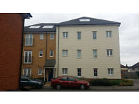 2 BED NEW BUILT APARTMENT: PANYER GARDEN DAGENHAM EAST RM10 7FE (NO DSS TENANT CALLING)