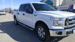 2015 Ford F-150 Super Crew XLT Pickup Truck! Price Reduced.