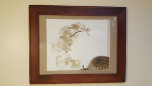 Professionally framed picture with glass