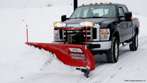 WESTERN SNOW BLADE FOR SALE