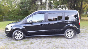 2014 Ford Transit Connect Titanium Fourgonnette, fourgon