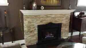 Napoleon fireplace gas insert