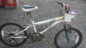 """Nakamura 20"""" kids bike"""