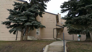 WarWick Road Townhouse for Rent Conner Unit with Small Backyard Edmonton Edmonton Area image 6