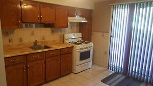 Stunning Basement Apartment Rental Williams/Rutherford Brampton