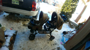 Mint shape double stroller Works great nutureal color