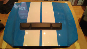 2010 FORD MUSTANG SHELBY GT500 HOOD / CAPOT
