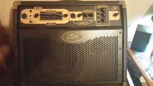 Acoustic amp with built in effects and looping Cambridge Kitchener Area image 1
